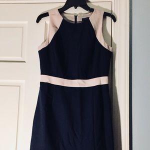 JCrew Gorgeous Dress Like New!